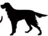 איור של כלב